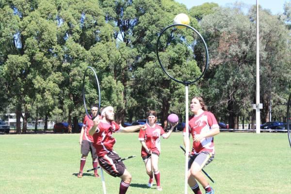 quidditch 4