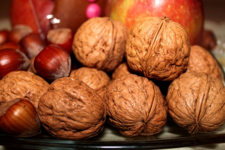 walnuts-558488.jpg