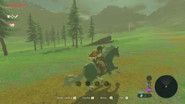 Zelda Still 6.png